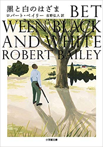 『黒と白のはざま』